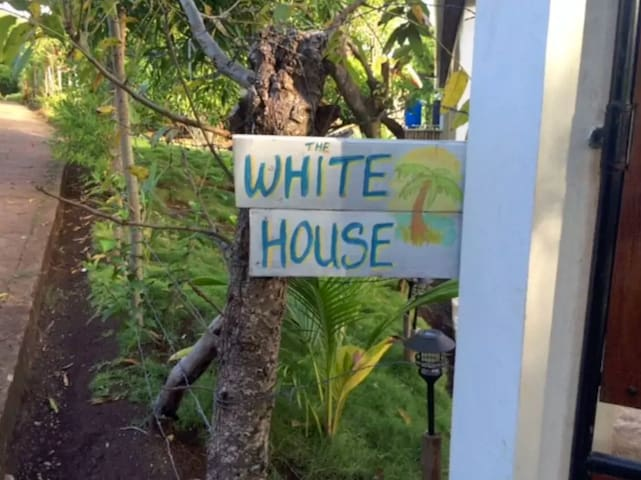 The White House: Little Corn Island Studio Apt - Corn Island - Appartement