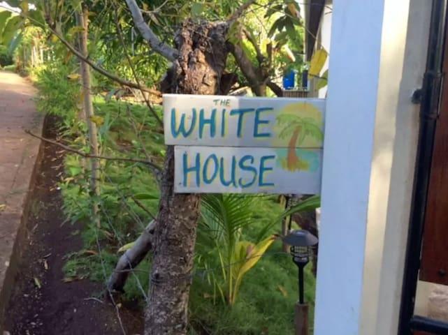 The White House: Little Corn Island Studio Apt - Corn Island - Huoneisto