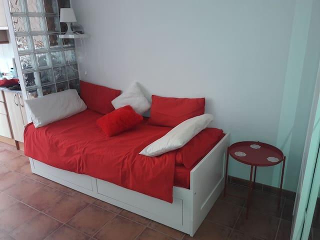Living room/bedroom.