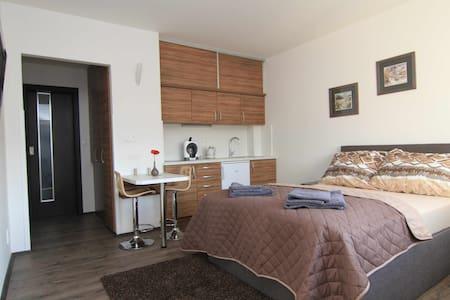 KV Apartmány 7 - Karlowe Wary - Apartament