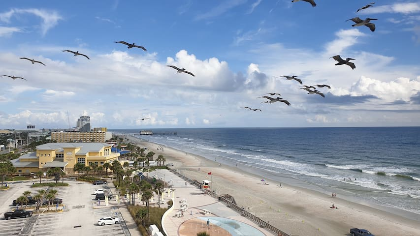 Daytona beach snow bird retreat