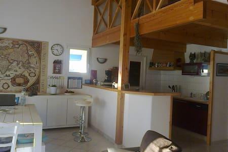 maison  dans petit bourg , calme - Castelnau-Chalosse - บ้าน
