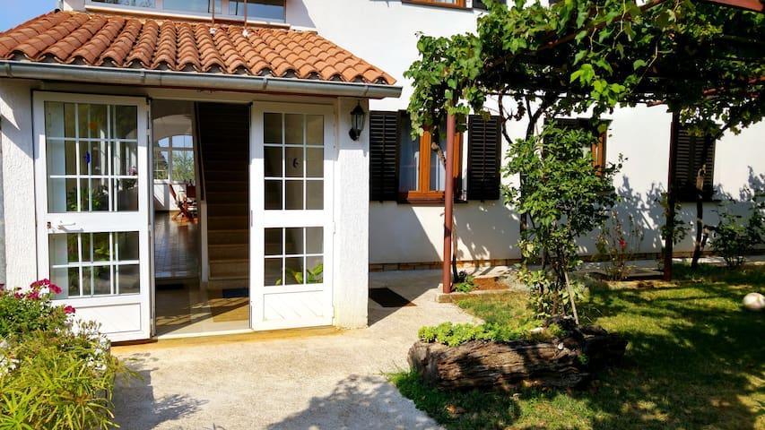 Marinela A1 - Sveti Lovreč - Apartmen
