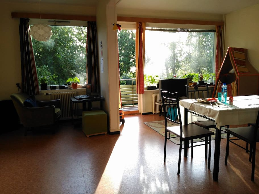 The living room on a sunny summer day.