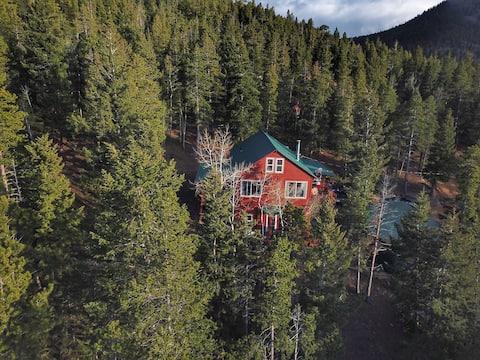Mountain Cabin Apt w/Private Entrance Scenic Views
