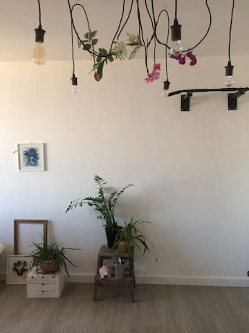 living room + horizontal bar