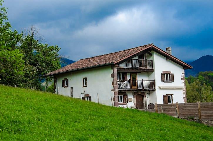 Casa confortable y bien ubicada. - Saint-Étienne-de-Baïgorry - House