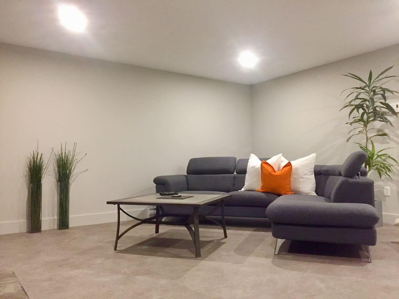 Salon au sous sol avec télé et foyer