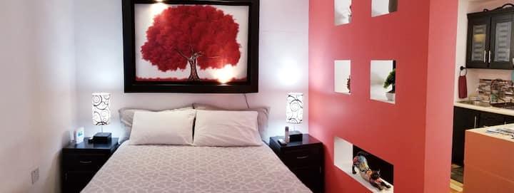 """Studio""""El árbol rojo""""en Vallarta,cerca de todo,A/C"""