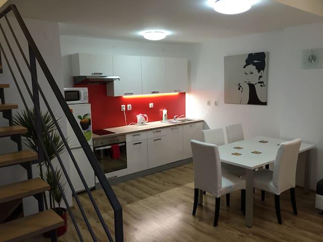 Bright modern duplex, 5min downtown - Praha - Huoneisto