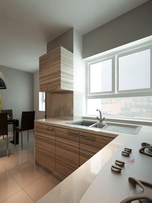 This is cooking area with lot of natural light.
