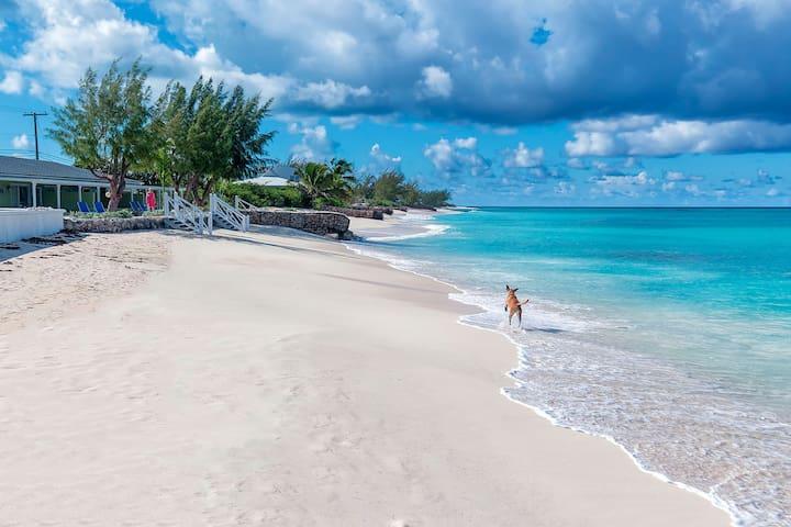 Fantastic Beachfront - 2 bedroom - Walk to town