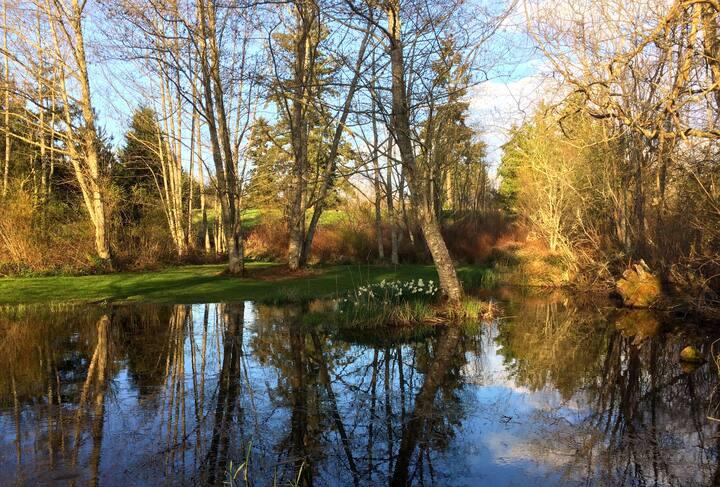 Artist's Island Retreat on 10 Acres