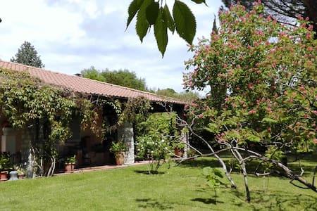 Umbria villa con giardino - Amelia - Wikt i opierunek