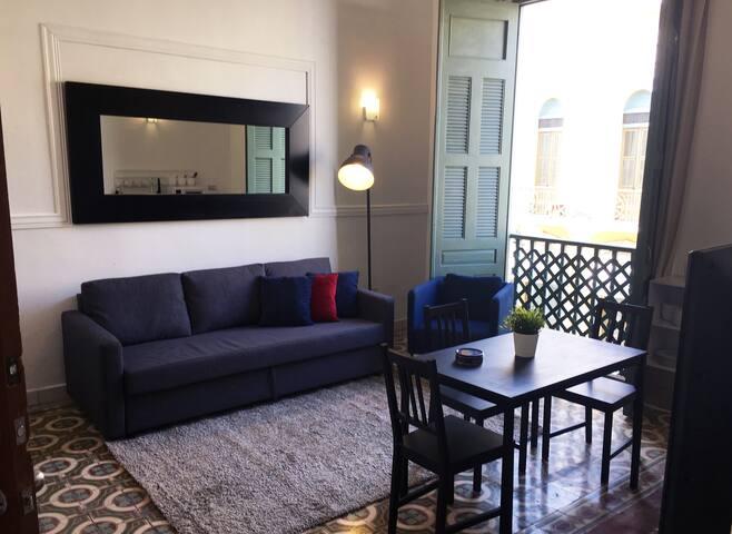 Vista completa de la sala la cual cuenta con un sofá cama donde se pueden acomodar dos personas con facilidad.