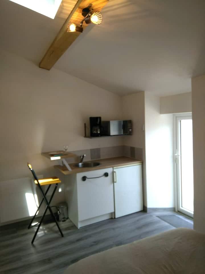 Studette ( chambre,coin cuisine et sdb)
