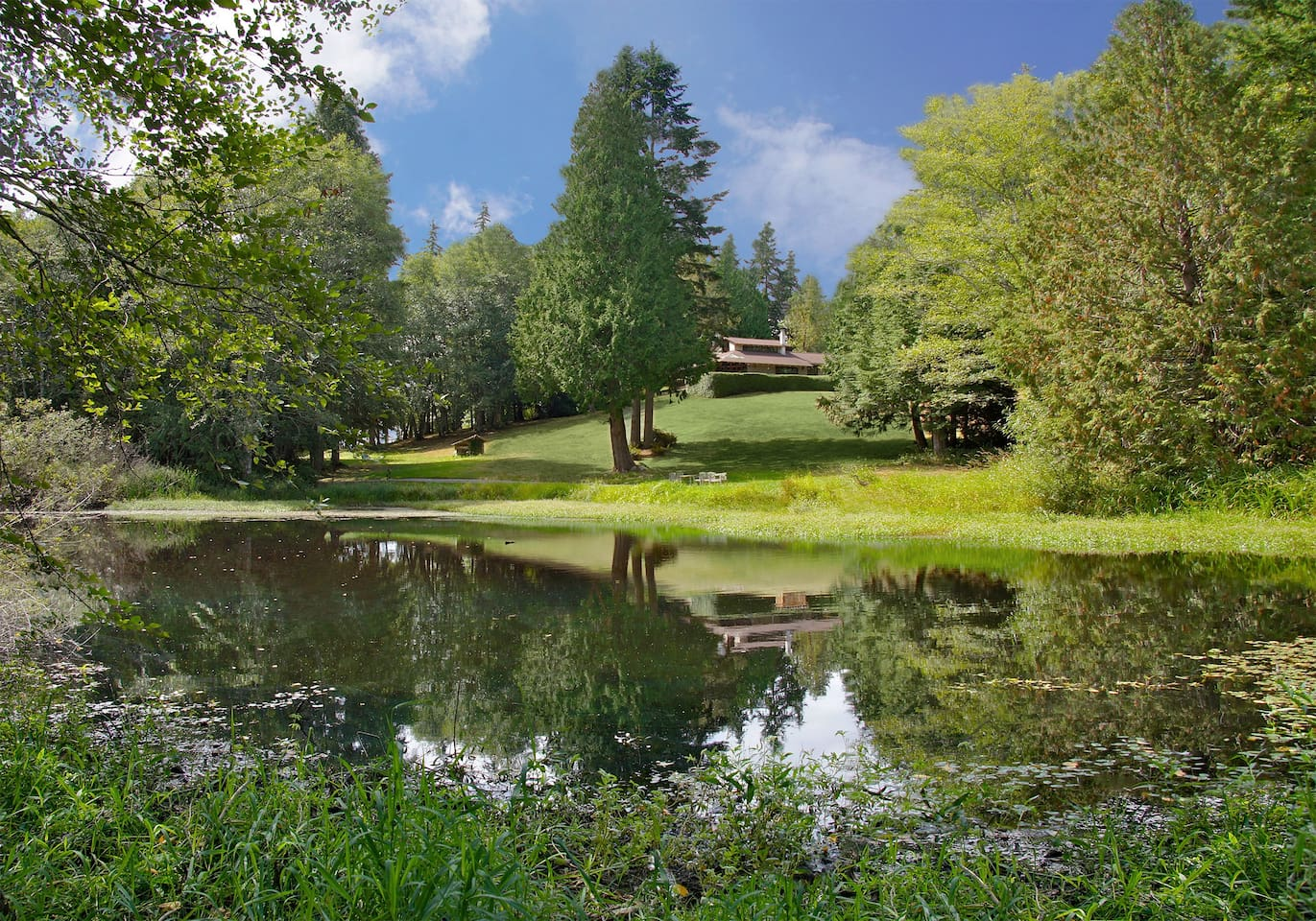 Kingston House is 27 acres of rolling lawns, a lavender farm,  pond and a grand mid-century home of douglas-fir and stone. We are a quintessential Pacific Northwest setting for your celebration or weekend getaway.