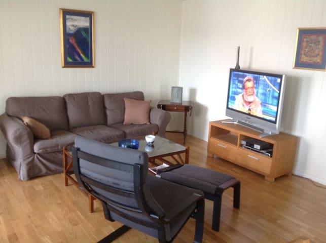 Langesund sentrum - Langesund - Apartament