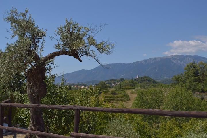 Country house near Asolo