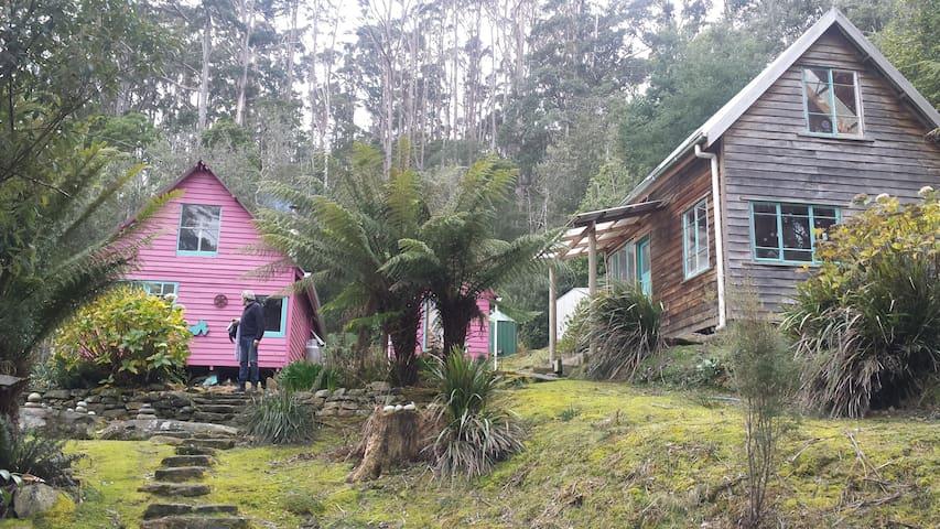 Sweetwater Cabins amongst the Tasman Rainforest