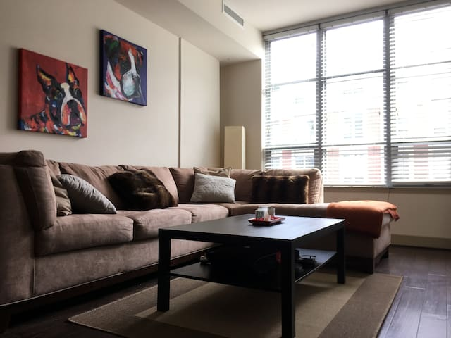 Luxury Apartment - Entire Home moments from D.C. - Arlington - Apartment