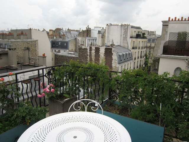 Terrace overlooking the rooftops of Paris
