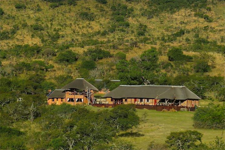 Entire Bombazi lodge and game reserve