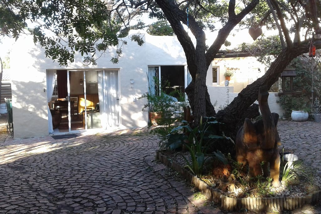 Trees and Birdlife outside Cottage