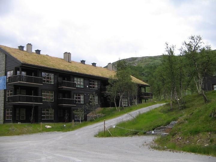 Tyin-Filefjell: Big, modern apartment (ski in/out)