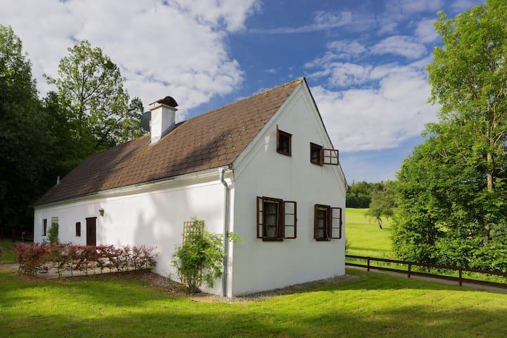 Romantisches Haus mitten im Grünen!
