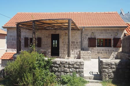 Traditional stone Villa with pool - Ljesevici