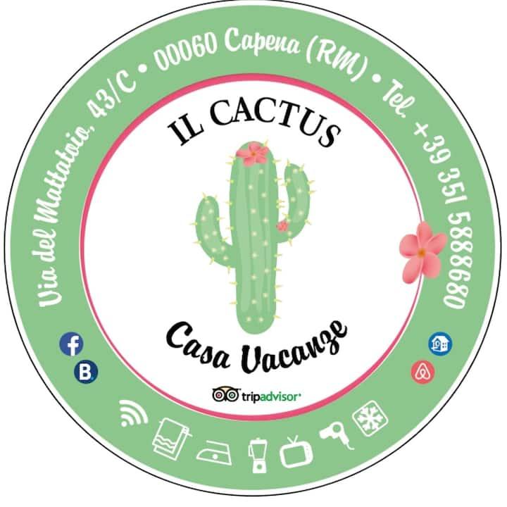 Entri al Cactus  e vai al sicuro.......