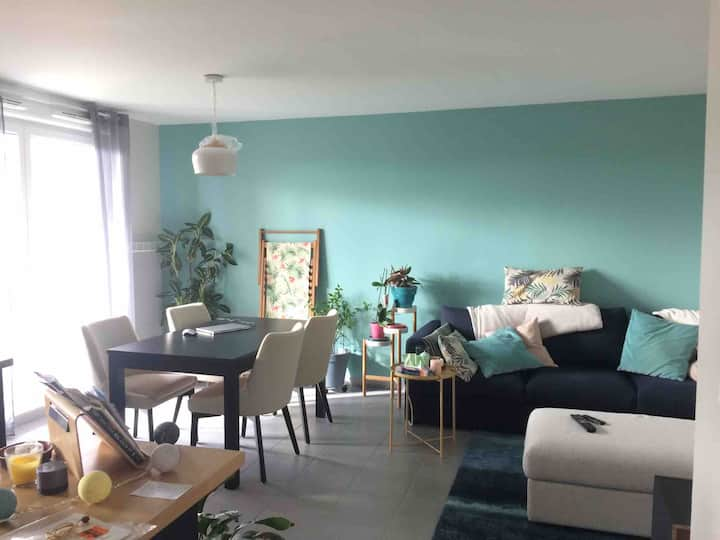 Agréable appartement proche Colomiers-Airbus