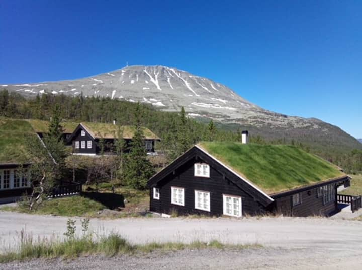 New Lodge close to Gaustatoppen