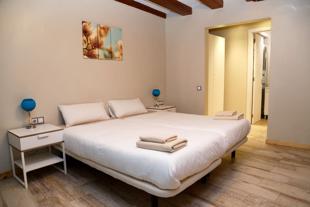 Master bedroom with two individual beds and private ensuite