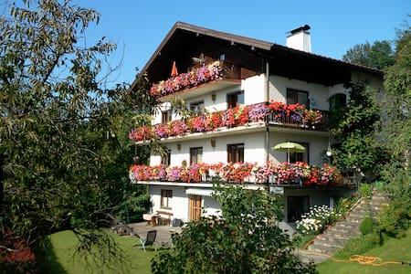 Berg- und Seeblick Ferienwohnung  2 bis 4 Personen - Kaisigen