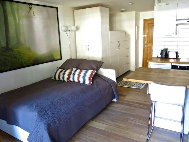 Bright studio ideally located