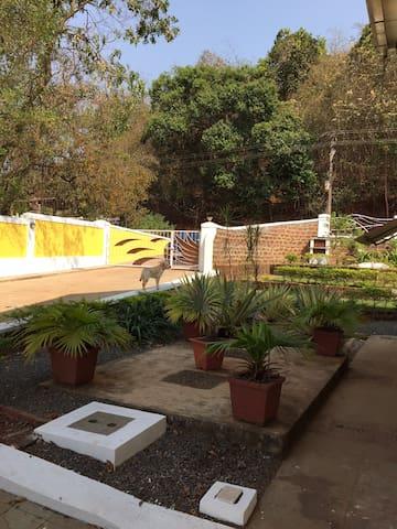 Harrys place 105 Moira Goa