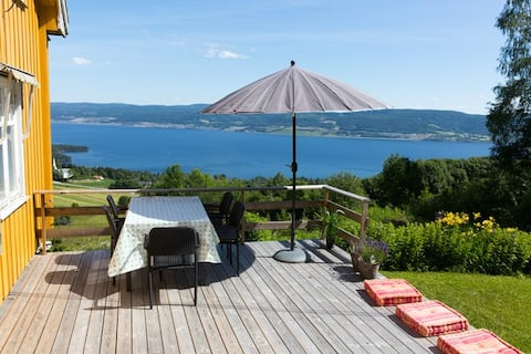 Lovely cabin overlooking lake Mjøsa - 1h from Oslo