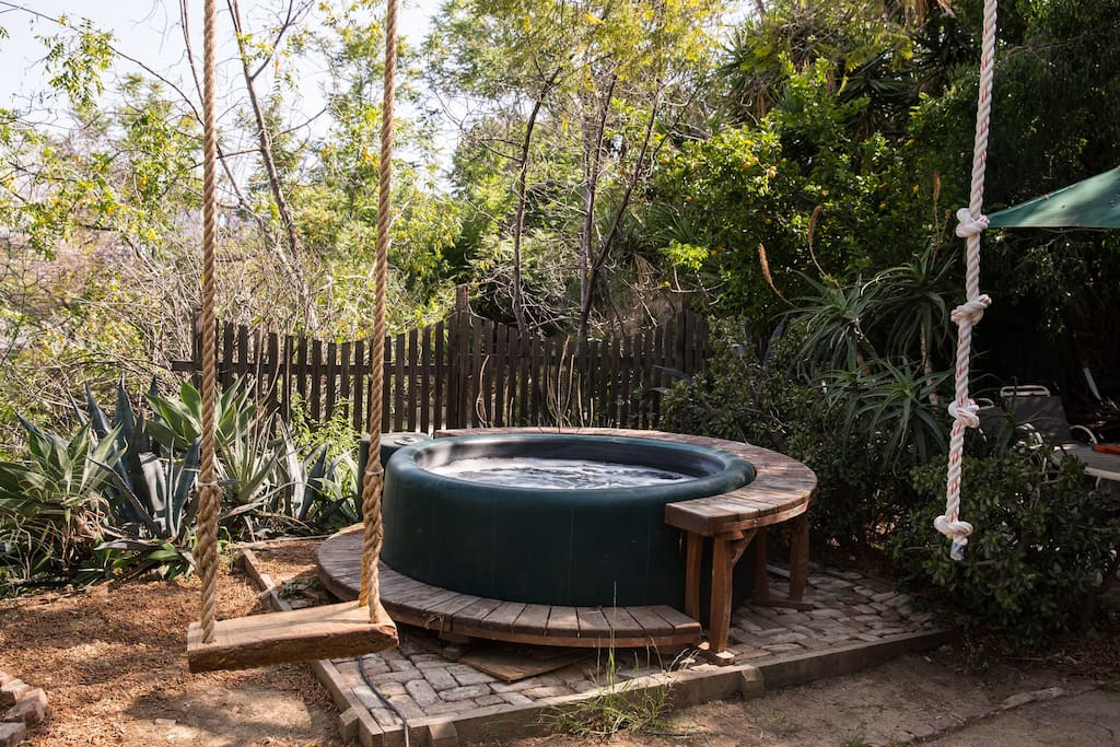 Our rope swing and jacuzzi in our backyard with lucious trees and succulents.
