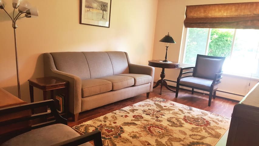 Living room features a queen size sofa sleeper with pillow top air mattress. TV stand is a chest of drawers.