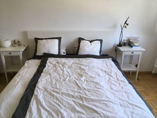Chambre dans un appartement au centre de Nyon.