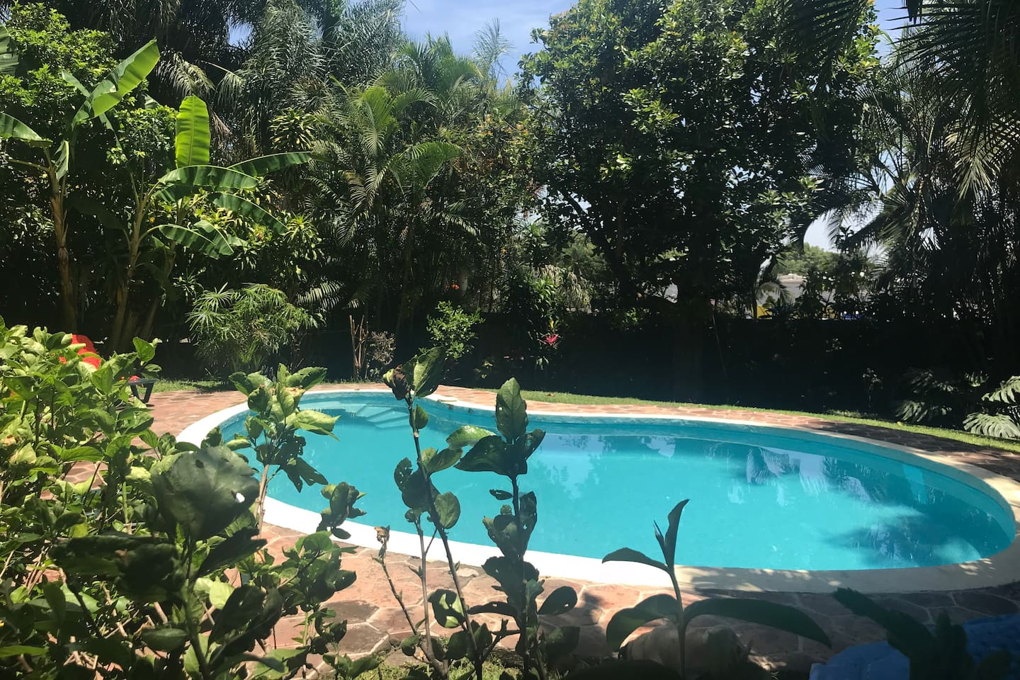 Enjoy the private pool and garden