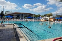 One of two large pools. Both heated one open air with kiddie pool/play area and two Jacuzzis. The Wellness Center boasts a large Olympic size lap pool, two Jacuzzis, steam room, dry sauna, weight room, full gym with Yoga, Zumba and Spin classes daily plus many more...