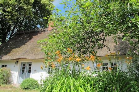 HOLLERBUSCH Idyllische Reetdachkate - Uelsby - House