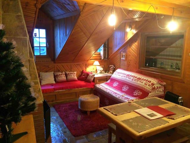 Studio mezzanine typique cocooning montagne