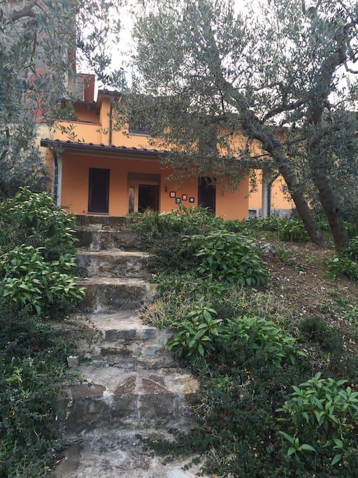 Vista casa dal giardino
