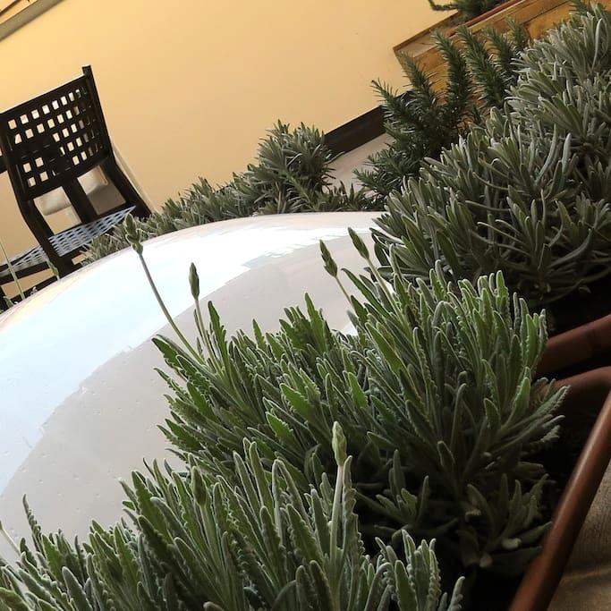 Arredo terrazza