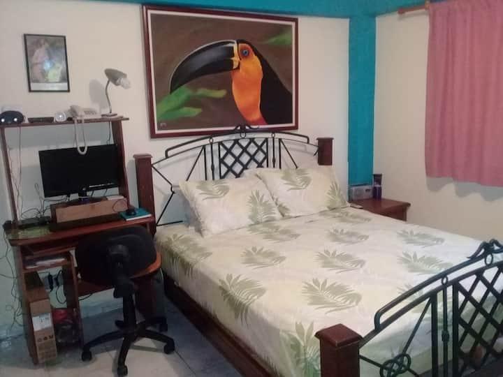 Alojamiento hermoso práctico y cómodo sólo damas