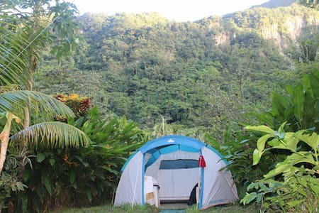 """Big Banana Campground """"SPOUGE"""" - Soufriere - 텐트"""